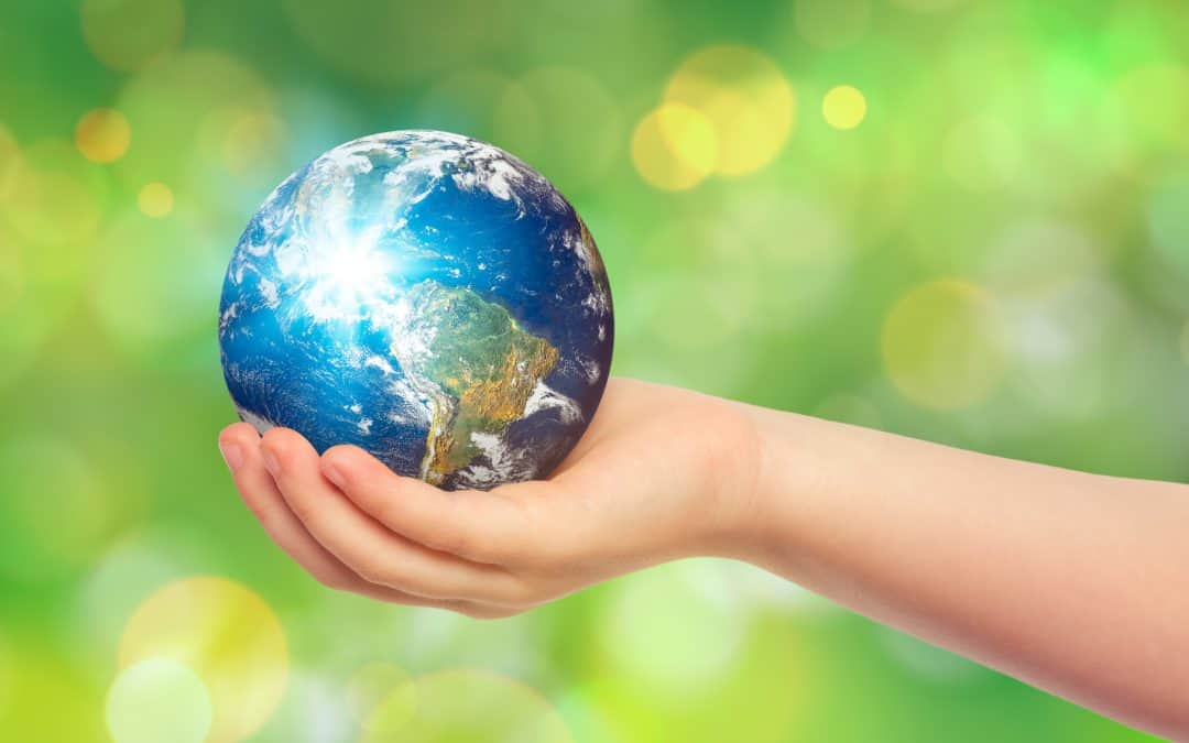 5 Earth Day Activities for The Whole Family!